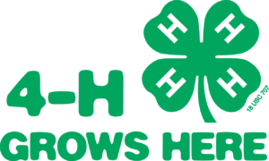 Cover photo for State 4-H Council Winter Newsletter