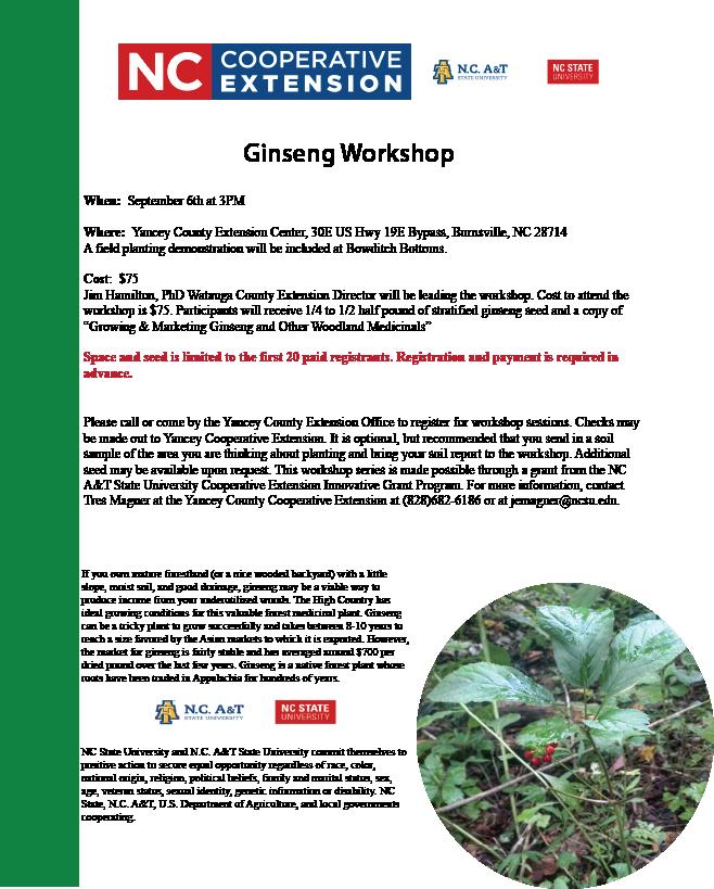 Ginseng Workshop flyer image