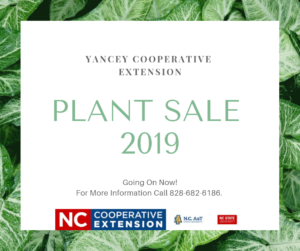 Cover photo for Plant Sale 2019