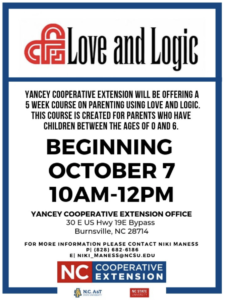 Love and Logic class flyer