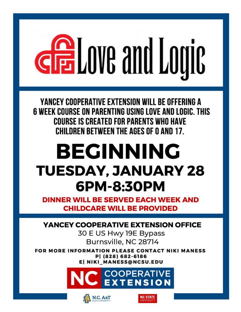love and logic flyer