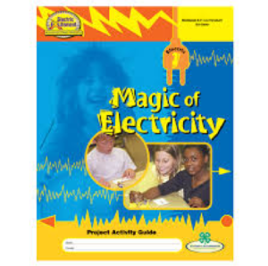 Magic of electricity logo
