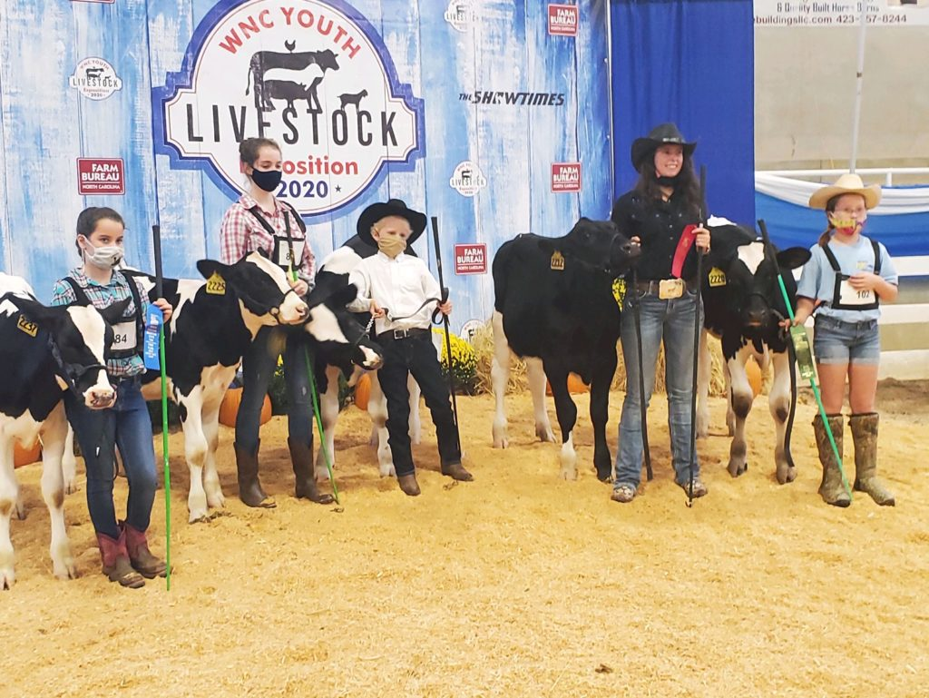 Beef Club at WNC Expo