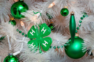 Cover photo for 4-H Holiday Programs