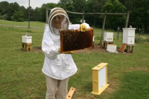 Cover photo for Celebrating Chatham County Beekeeper and Conservationist Judy Pick